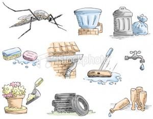 istockphoto_12794944-aedes-aegypti-mosquito